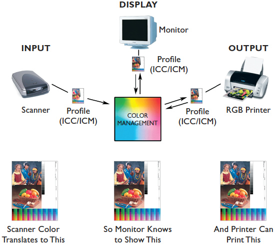 Guide to Color Management